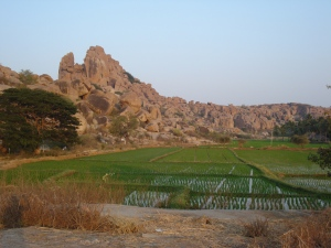 Hampi's boulders and rice-fields